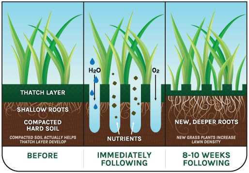 Lawn Core Aeration Benefits