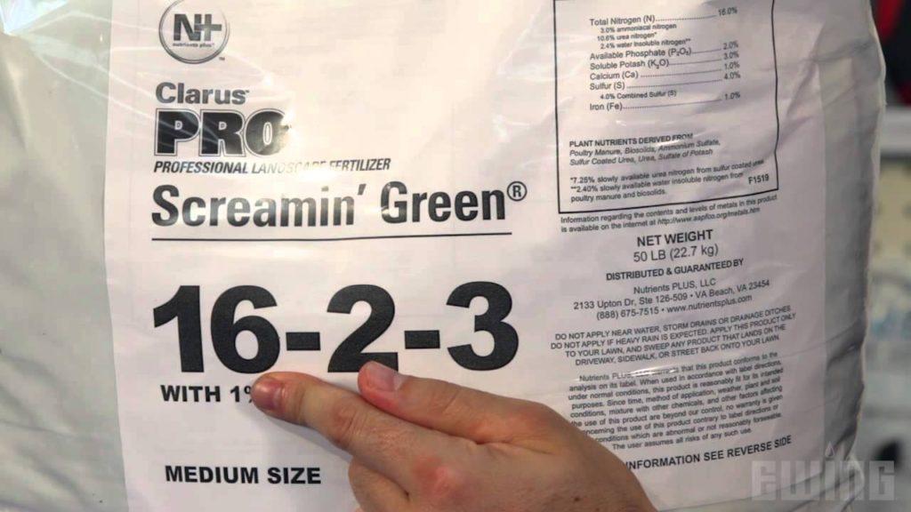 screamin green photo